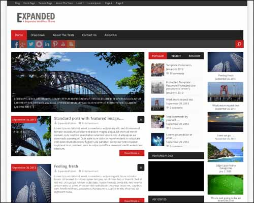 expanded wordpress theme
