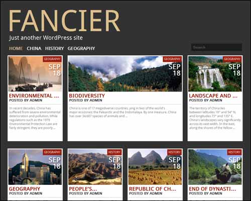 fancier wordpress theme