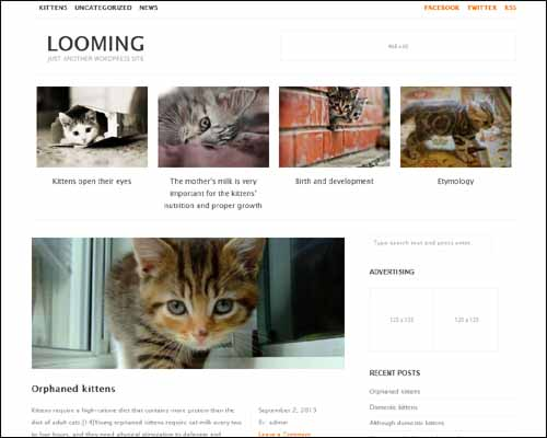 looming wordpress theme
