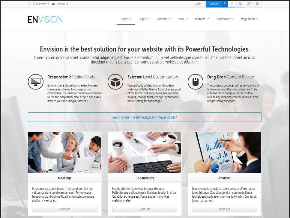 Envision WordPress theme