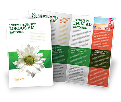 Ox-eye Daisy Brochure Template