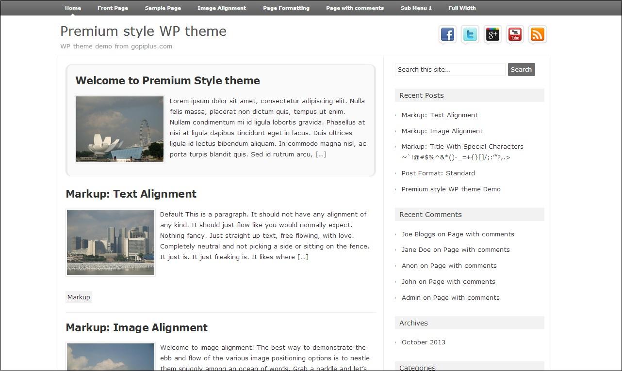 Premium style Wp Theme