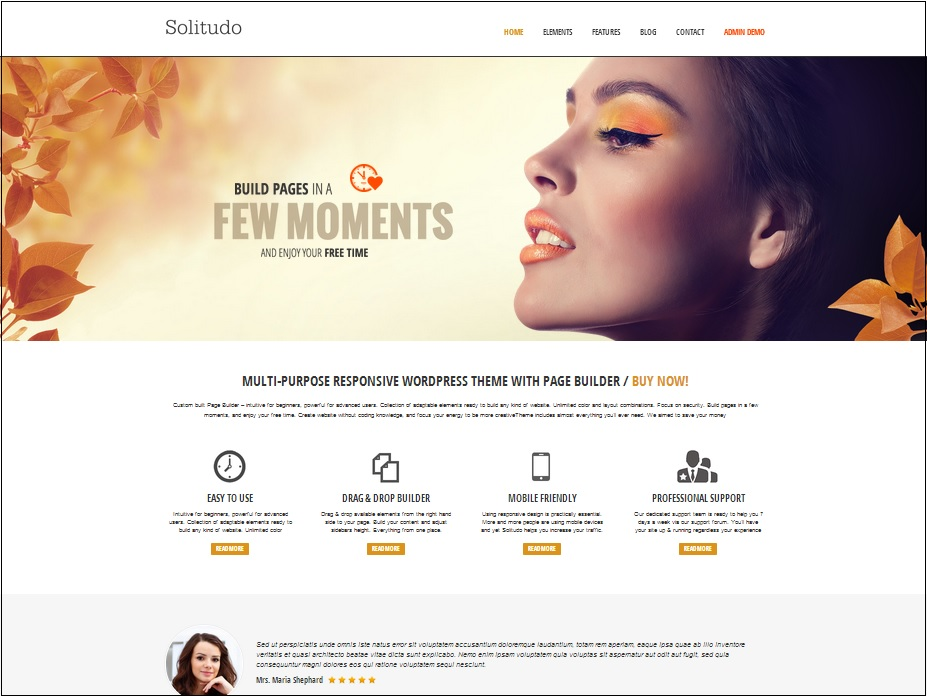 Solitudo  WordPress theme