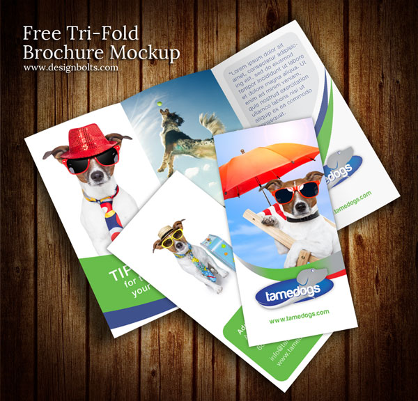 35 best free brochure templates feedtip for Brochure design mockup