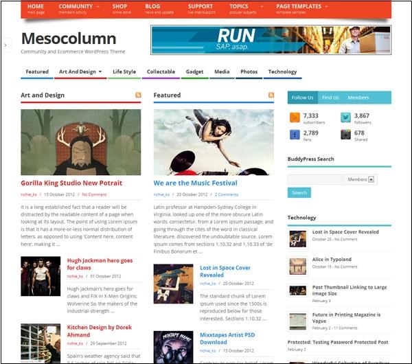 mesocolumn