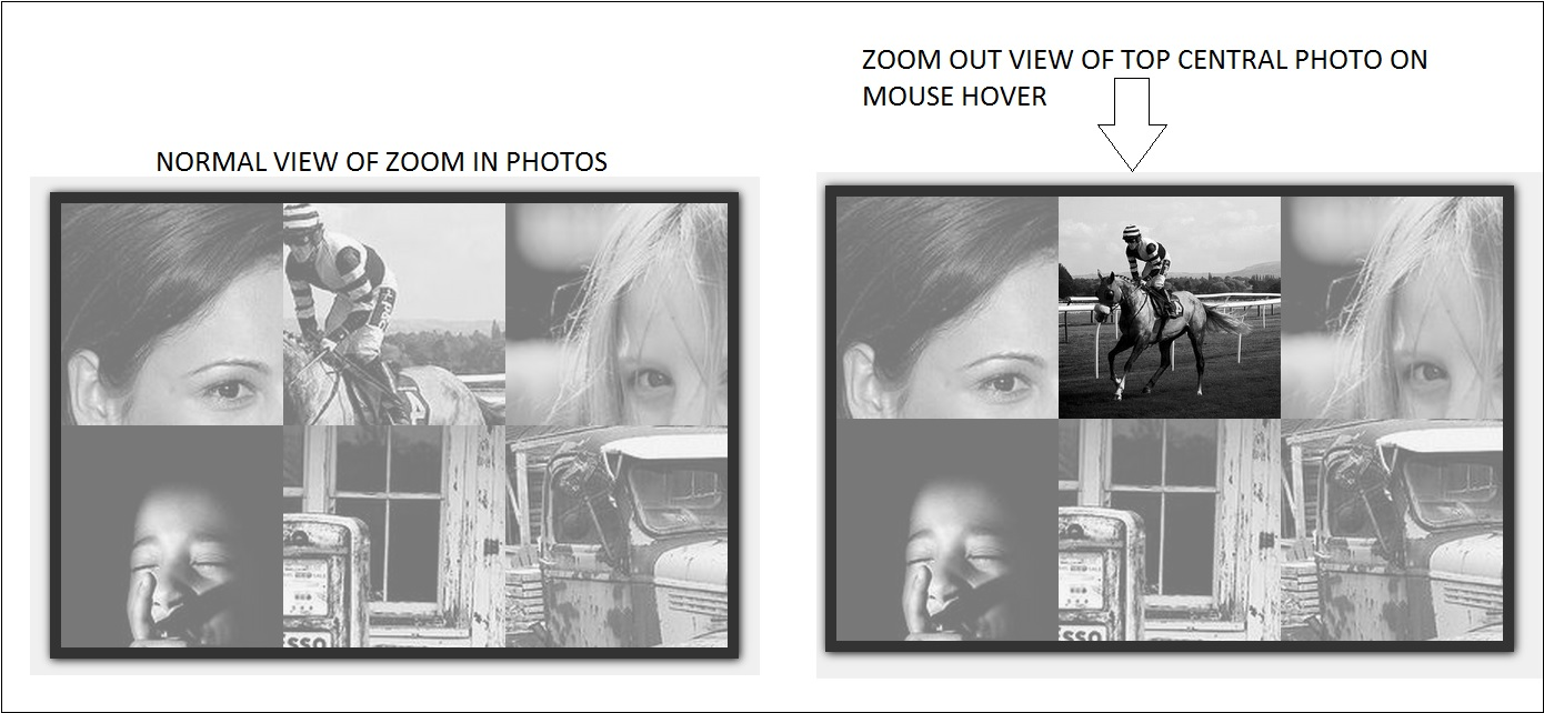 PHOTO ZOOM OUT