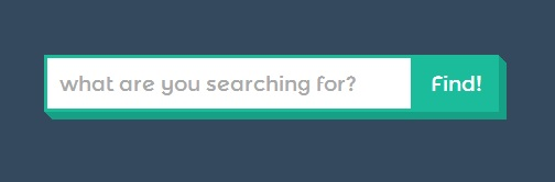 fancy search box