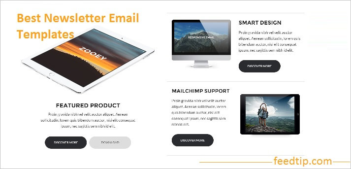 Best newsletter email templates