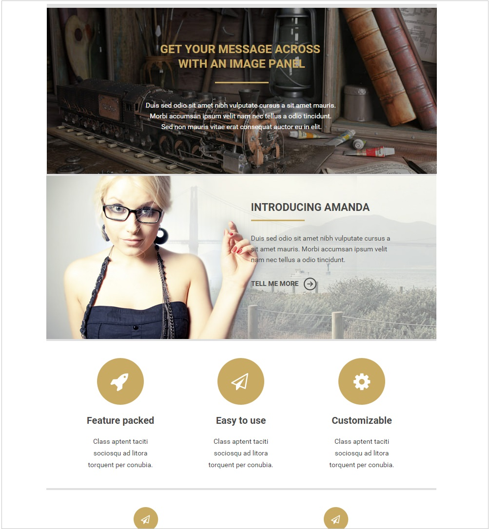 Miaghi responsive email template