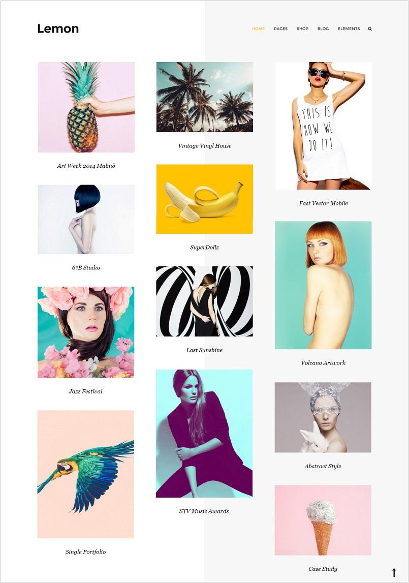 Capri portfolio wordpress theme