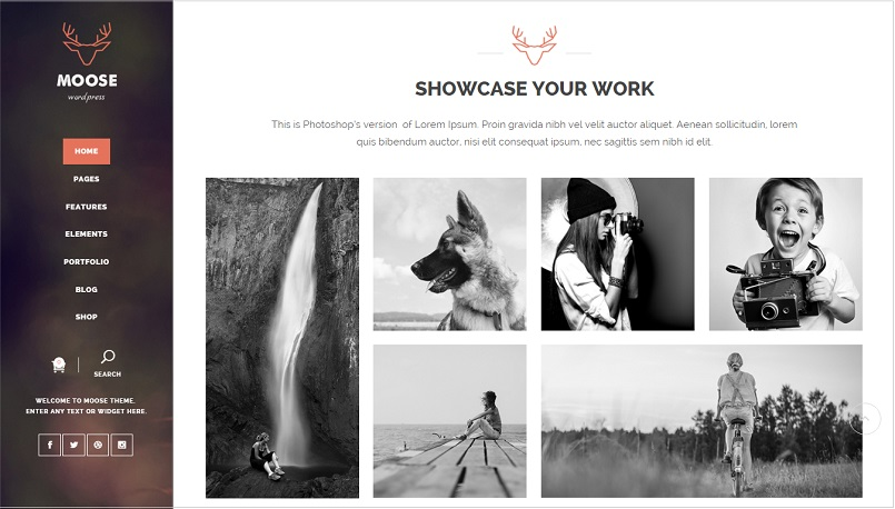 Moose Portfolio WordPress theme