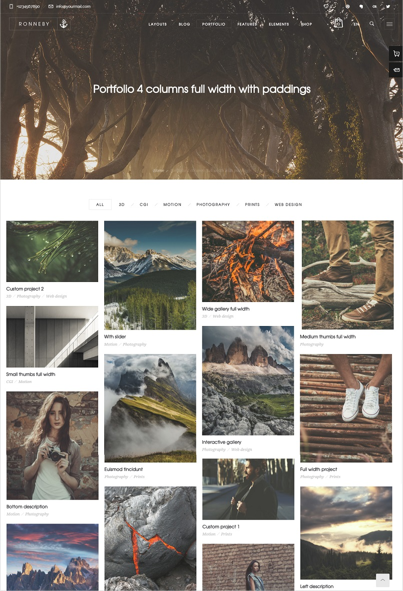 Ronneby Portfolio wordpress theme