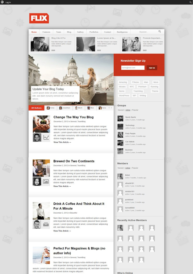 flix wordpress theme