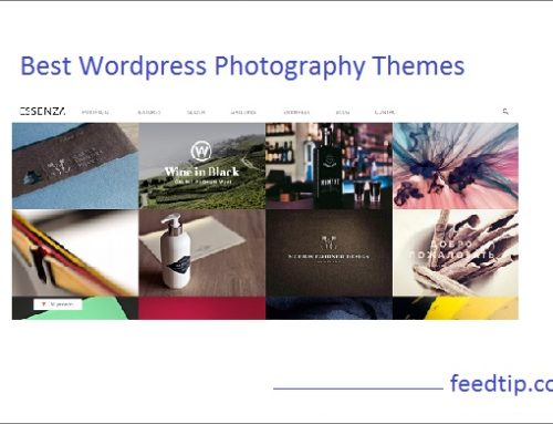 47 Best WordPress Photography Themes