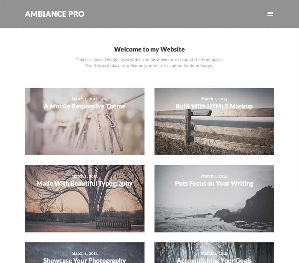 ambiance pro wordpress photography theme